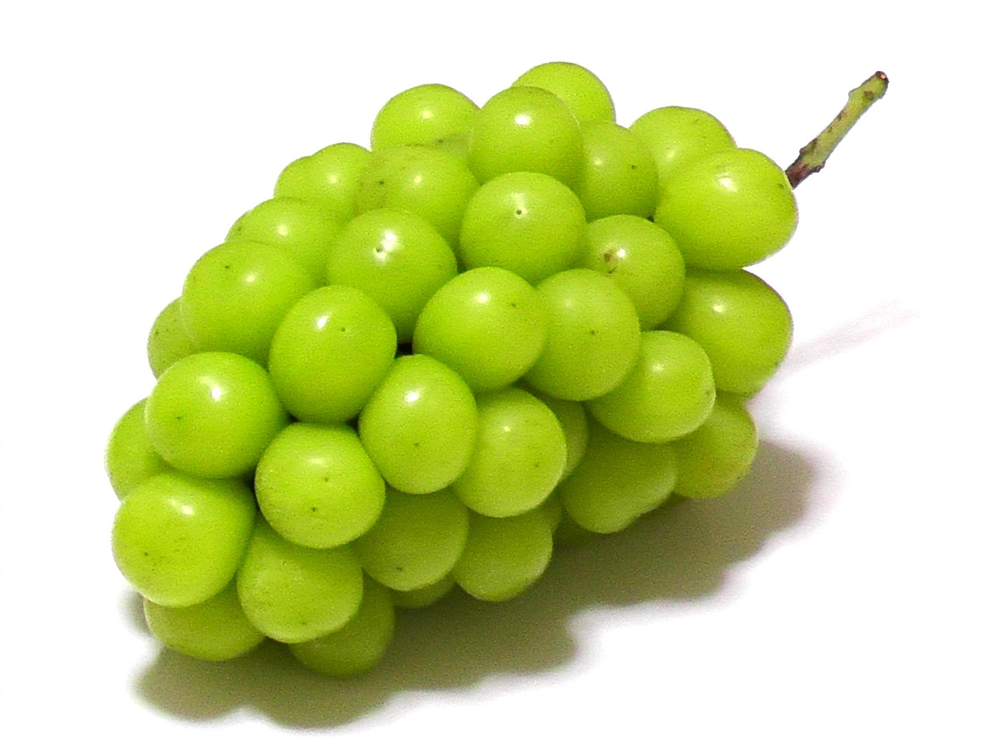 【果糖と果糖ブドウ糖液糖】フルーツに含まれる果糖 フルーツに含まれるから、「果糖」。 わかりやすいんですけど、誤解があります。 「果糖」もしくはフルクトースと聞くと、果物に含まれるので、健康やダイエットにも良さそうというイメージがありますよね。