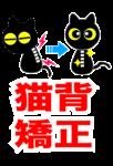 猫背、矯正、整体、大阪